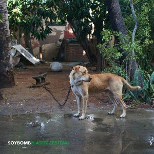 Cover Soybomb Hund im Hinterhof